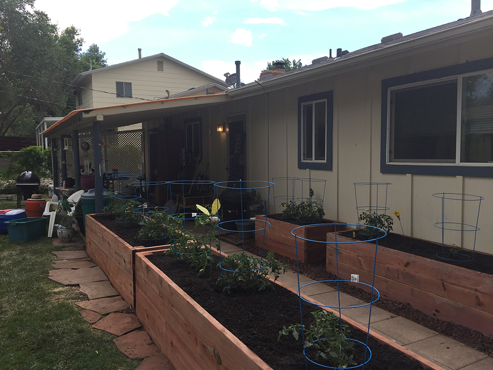 Colorado Springs, Colo. Backyard Garden Upgrade before