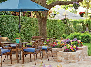 Blue Trends in a Patio