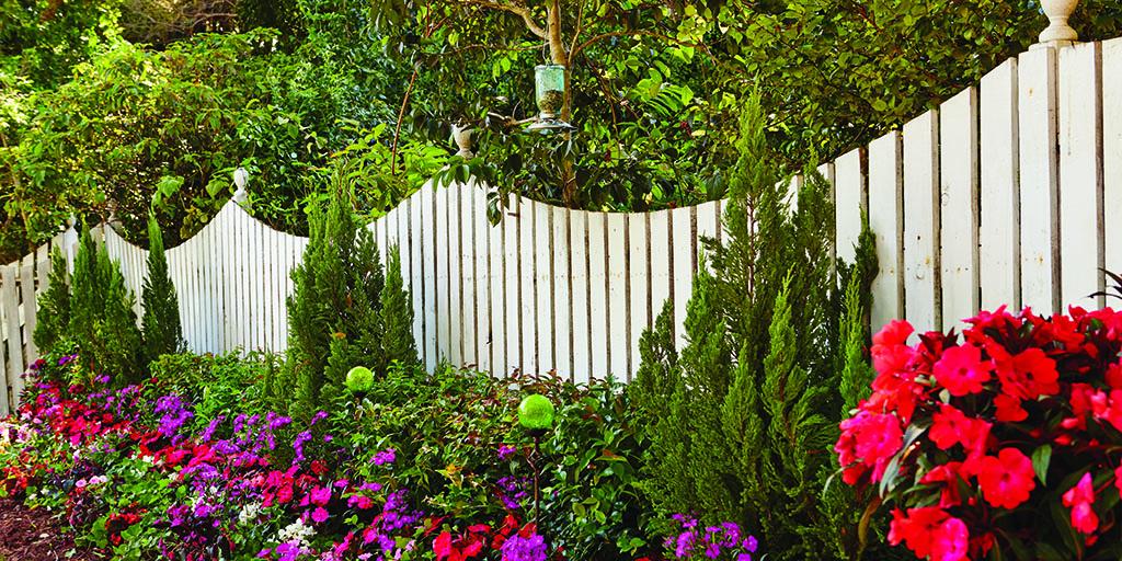 Pet path along fence