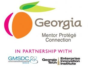 Georgia Mentor Protege Connection