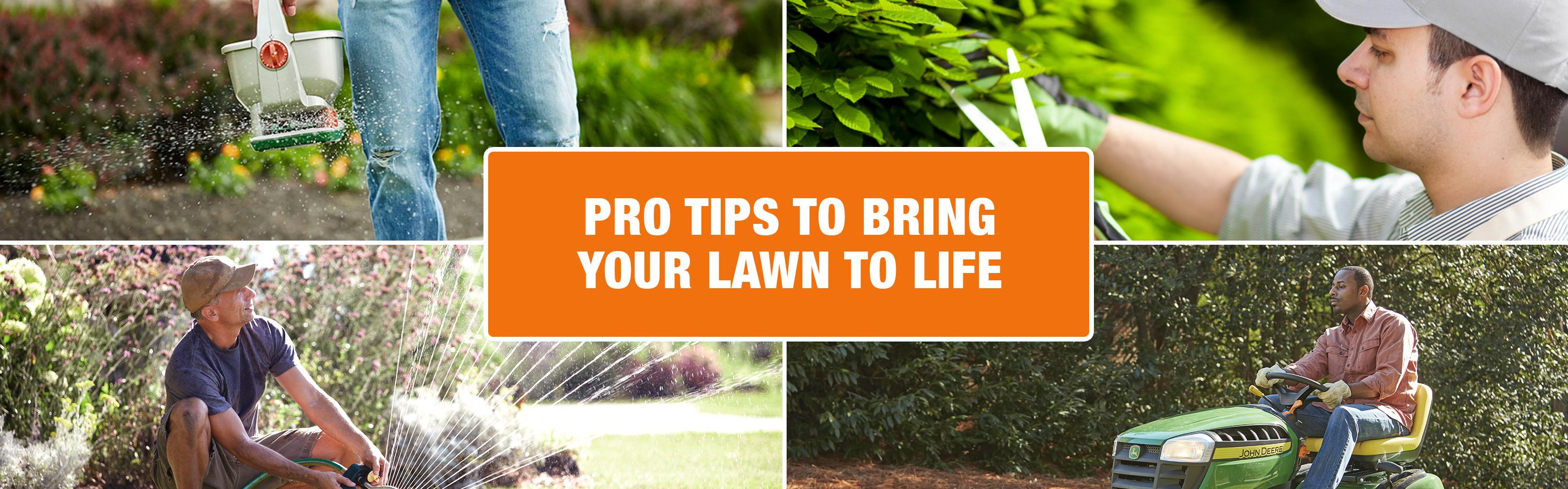 Improve your lawn care with these tips