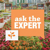 Ask the Expert Gardening Guru