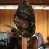 United States Marine Corps hat