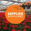 Supplier Spotlight: Wood's Greenhouse